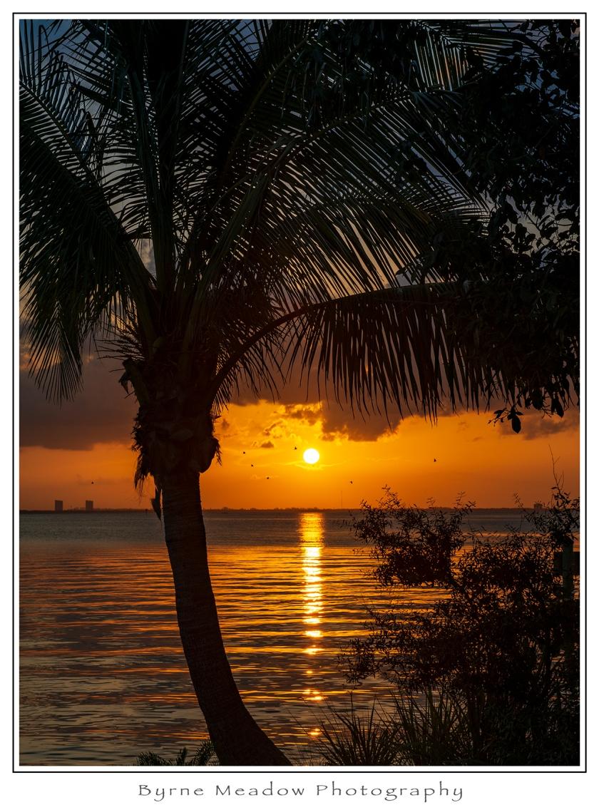 Florida2018_018